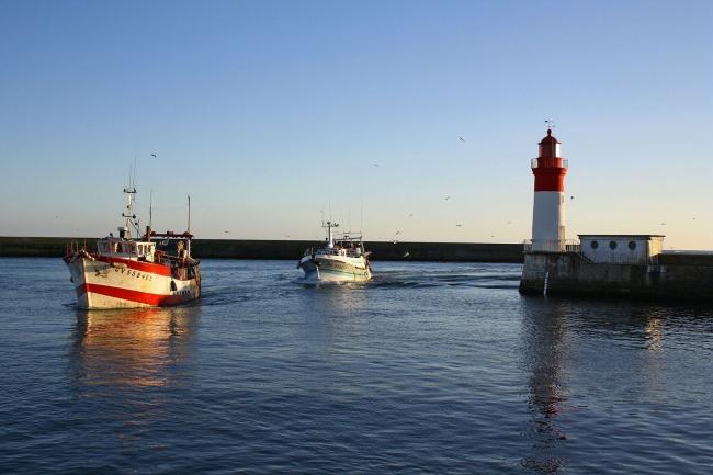 Camping Finistère Sud - bateaux de pêche au Guilvinec