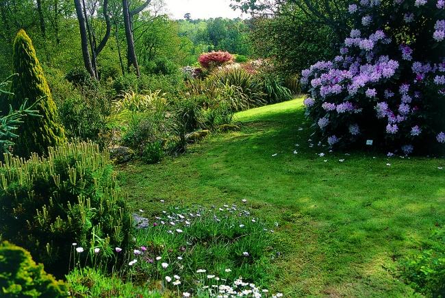Camper prêt de Pont l'Abbé, jardin fleuri