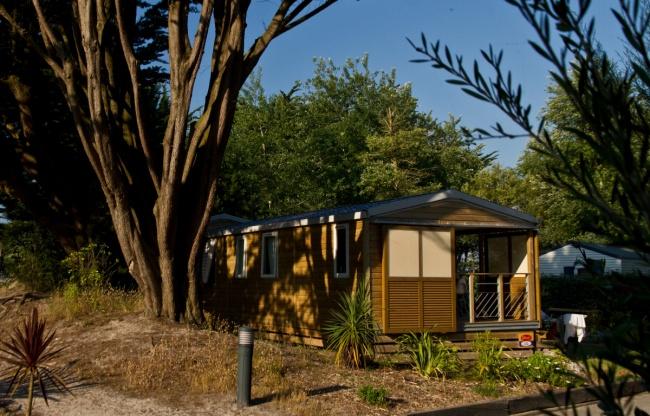 Cottage Dunes 5-6 personnes - emplacement